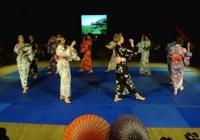 Japan-night_Vilnius16-1
