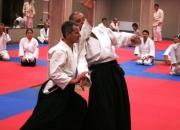 Aikido Aikikai seminaras Šiauliuose