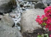 Japoniško sodo atidarymas VU botanikos sode